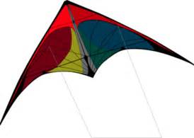 Ban on kite flying essay